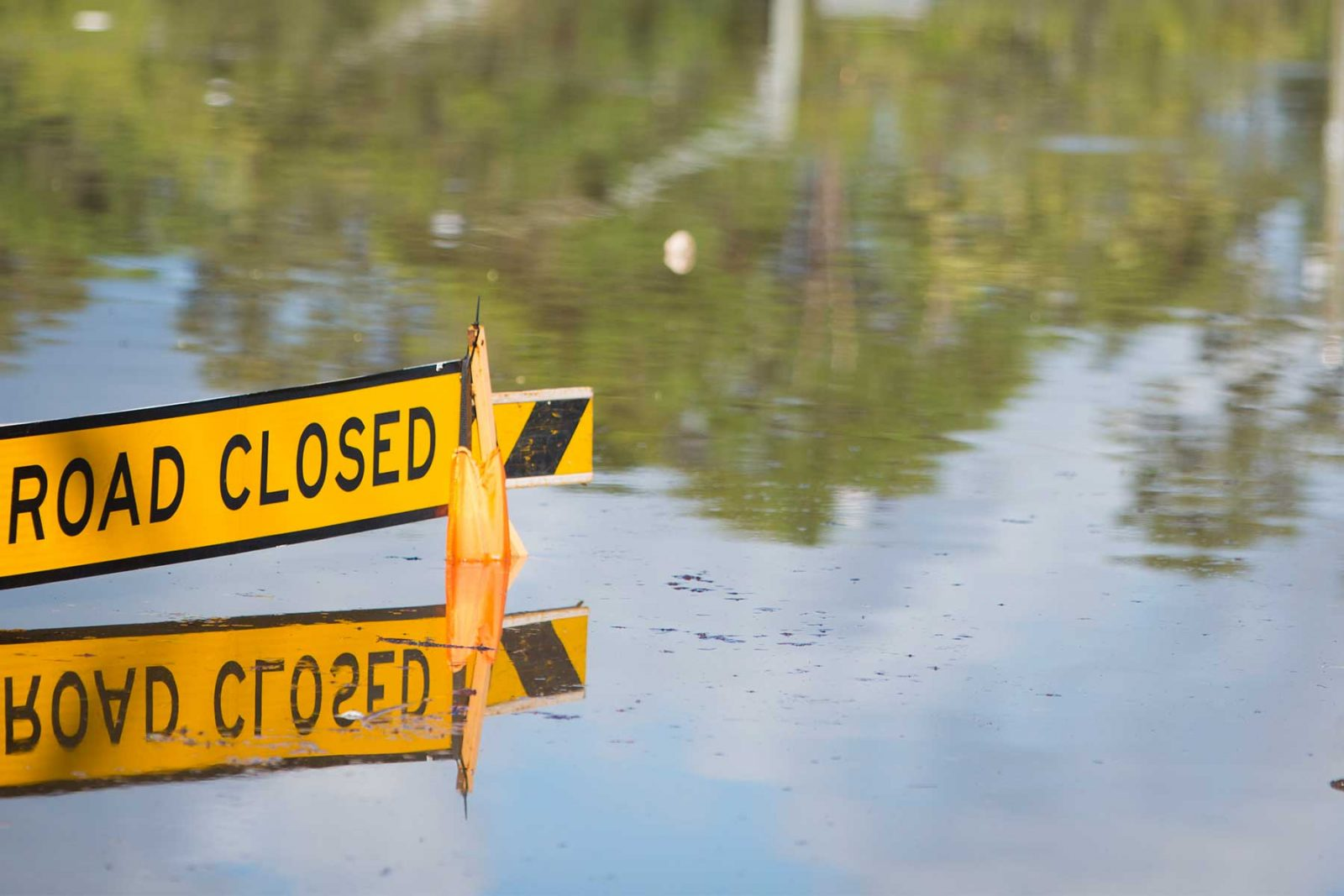 Flooded area with road closed sign